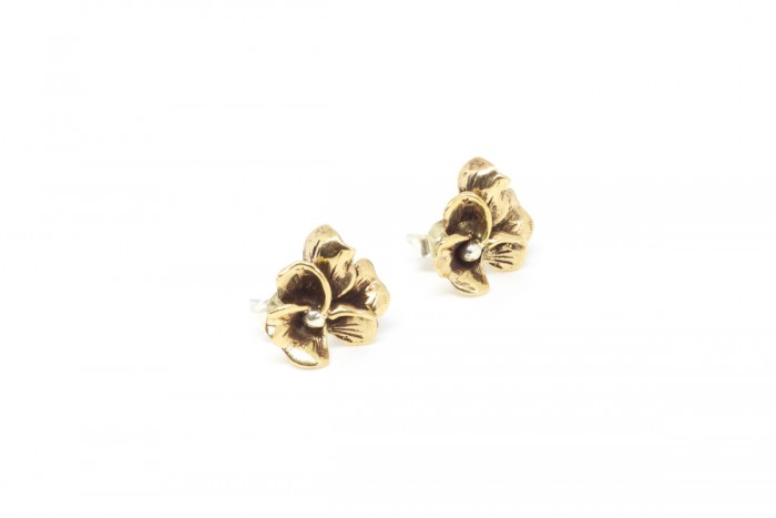 Earrings Modulo