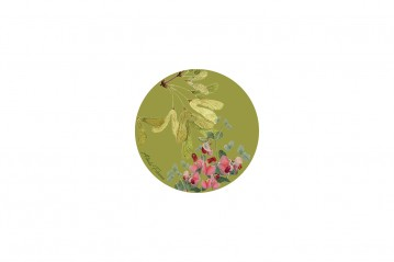 Set of 6 Coasters Horticulture