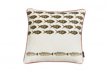 Cushion Mediterraneo Damselfish Red